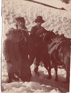 My Great Grandfather, Alan Davidson aged 7 with his sister Molly and mother Charlotte, in 1907 on their crossing of the Andes.